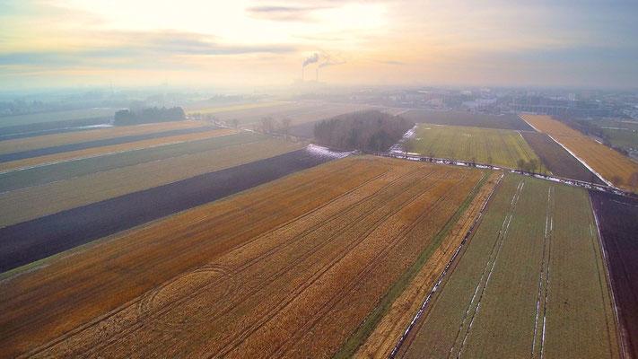 Drohnenfoto - Vogelperspektive - Drohne - Drohnenbild - Luftaufnahme - See - München - Herbst