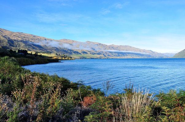 Neuseeland, Südinsel, See, Lake Wakatipu