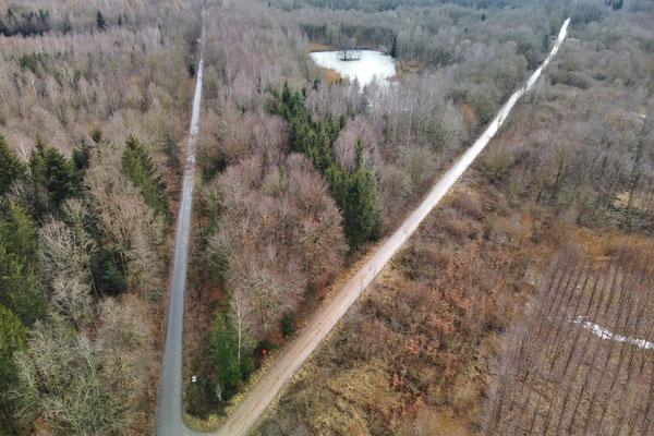 Drohnenfoto - Vogelperspektive - Drohne - Drohnenbild - Luftaufnahme - Weg - Wald