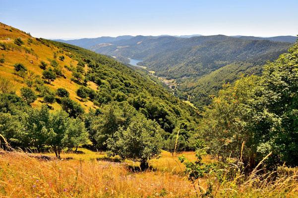 Frankreich, Elsass, Landschaft