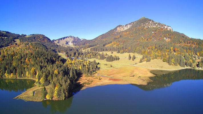 Vogelperspektive, Drohnenfoto, Drohnenbild, Luftaufnahme, Bäume, Wald, Berge, Alpen beim Spitzingsee, Spiegelung, Bodenschneid, Brecherspitz, Sommerwanderung