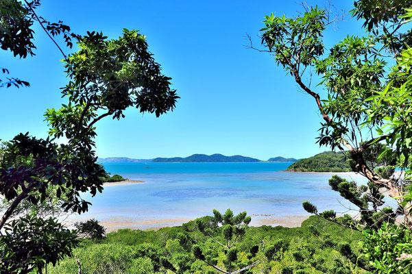 Australien, Australia, Ostaustralien, Ostküste, Queensland, Landschaft, Wasser, Meer, Whitsunday Islands, Korallen, Coral Beach
