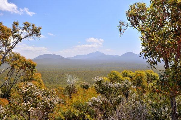 Australien, Australia, Westaustralia, Western Australia, Landschaft, Stirling Range National Park