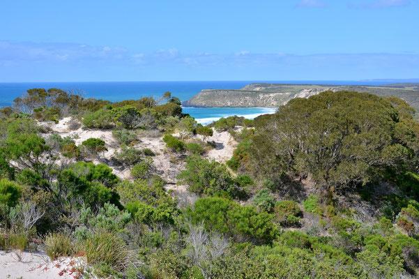 Australien, Australia, South Australia, Kangaroo Island, Landschaft, Meer, Felsen, Penneshaw