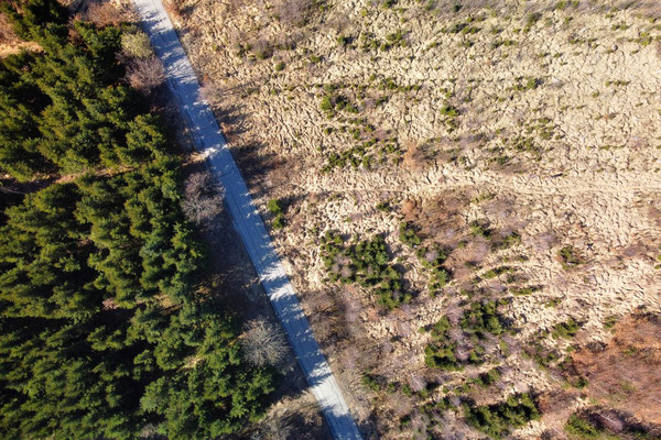 Drohnenfoto - Vogelperspektive - Drohne - Drohnenbild - Luftaufnahme - Weg - Wald - Wiese