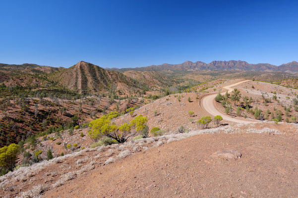 Australien, Australia, Südaustralien, South Australia, Landschaft, Flinders Ranges