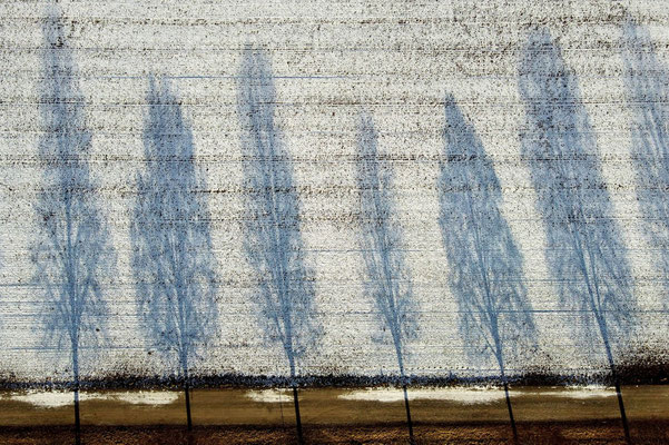 Vogelperspektive, Drohnenfoto, Drohnenbild, Schattenspiel, Luftaufnahme, Bayern, Feld, Weiss, Grün, Streifen, Bäume, Schatten, Muster, Flecken, Winter, Weiss, Schnee