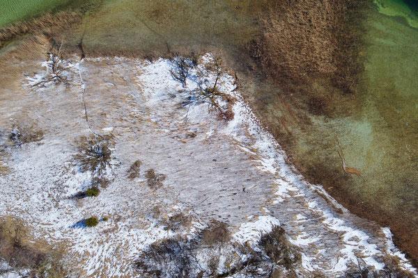 Drohnenfoto - Landschaft - Schnee - Türkis - Schilf - Vogelperspektive - Drohne - Drohnenbild - Luftaufnahme - See - Tegernsee