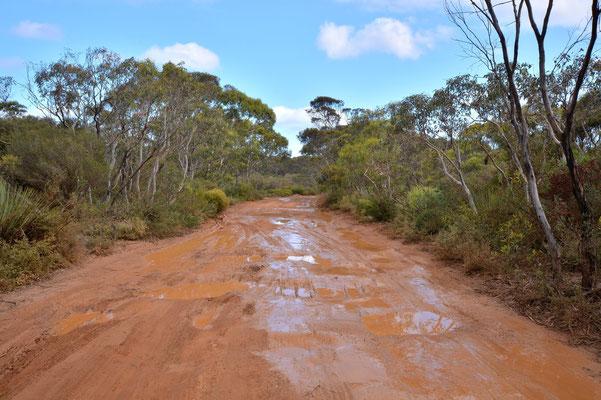 Australien, Australia, South Australia, Kangaroo Island, Landschaft, Ungeteerte Strasse, Dirt Road