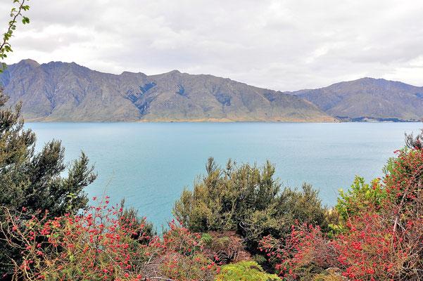 Neuseeland, Südinsel, See, Lake Hawea