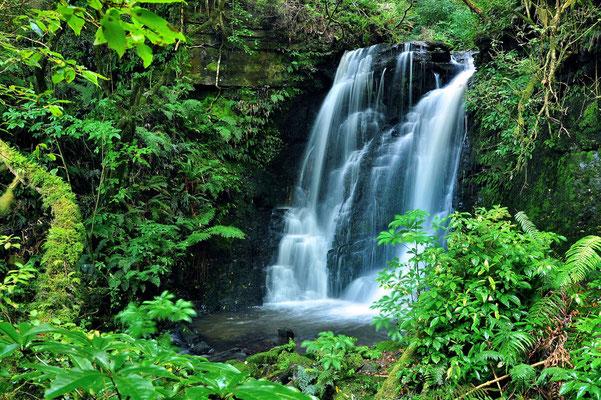 Neuseeland, Südinsel, Matai Falls, Wasserfall