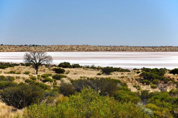 Australia - Australien -Zentralaustralien - Outback - Northern Territory - Landschaft - Salzsee