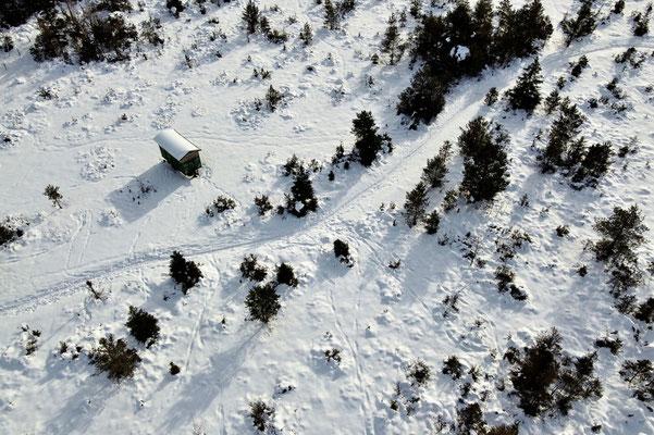 Drohnenfoto - Vogelperspektive - Drohne - Drohnenbild - Luftaufnahme - Wanderweg - Wald - Winter - Schnee