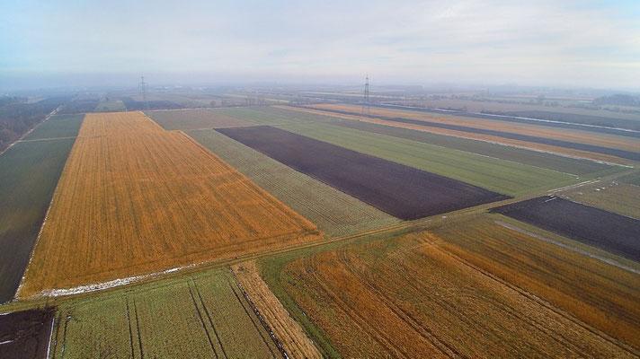 Vogelperspektive, Drohnenfoto, Drohnenbild, Luftaufnahme, Bayern, Feld, Grün, Braun, Streifen, Herbst