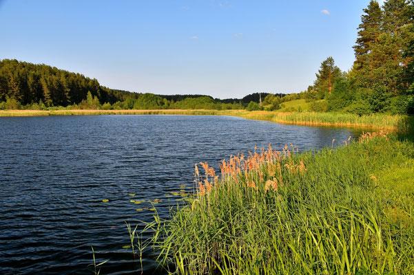 Litauen, Rundreise, Landschaft, Wanderung, See, Ignalina