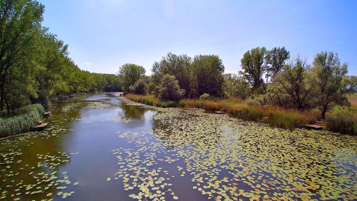 Drohnenfoto - Vogelperspektive - Drohne - Drohnenbild - Luftaufnahme - Fluss - Kanal