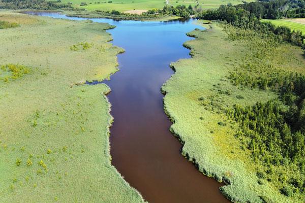 Drohnenfoto - Vogelperspektive - Drohne - Drohnenbild - Luftaufnahme - See - Bach - Fluss