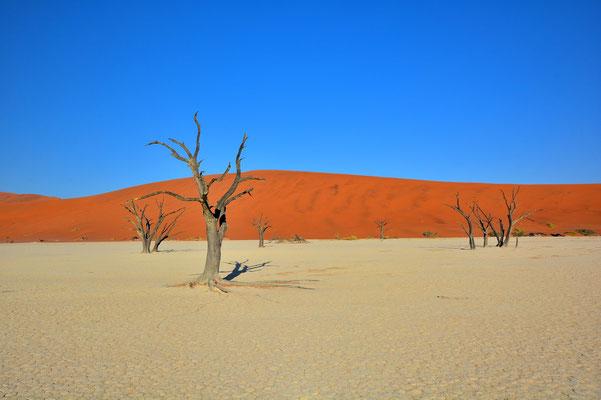 Namibia - Rundfahrt - Reise - Rundreise - Landschaft - Sossusvlei - Sanddünen - Deadvlei