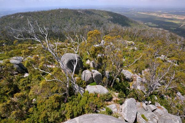Australien, Australia, Westaustralia, Western Australia, Landschaft, Felsen, Porongurup National Park