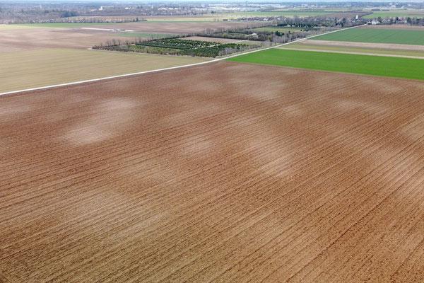 Vogelperspektive, Drohnenfoto, Drohnenbild, Luftaufnahme, Feld, Grün, Braun, Gelb, Parzellen, Streifen, Flecken, Wolken, Sommer, Acker