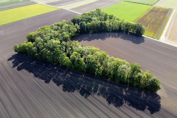 Vogelperspektive, Drohnenfoto, Drohnenbild, Schattenspiel, Luftaufnahme, Bayern, Feld, Weiss, Grün, Streifen, Bäume, Schatten, Muster, Flecken