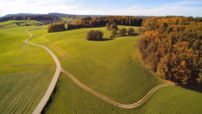 Drohnenfoto - Vogelperspektive - Drohne - Drohnenbild - Luftaufnahme - Wanderweg - Wiese