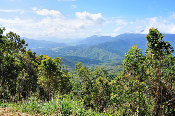 Australien, Australia, Ostaustralien, Ostküste, Queensland, Landschaft, Atherton Tablelands