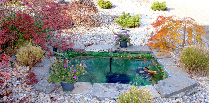 Création d'un bassin sur mesure en résine avec éclairage intégré