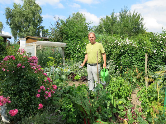 Gemüsegarten, etwas Gemüse für den Eigenanbau.