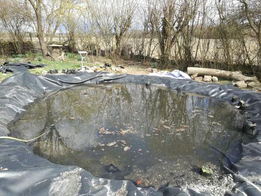 Der Teich, Folie und Vlies sind neu verlegt.
