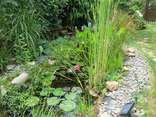Als kleiner Teich mit Treppenstufen, natürliche Steine.