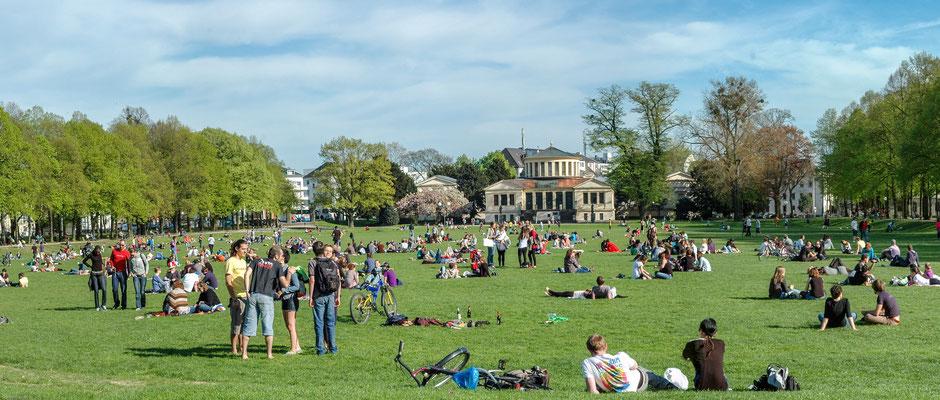 Hofgarten Bonn