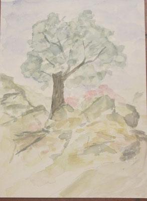 Cinque Terre Nr.183 25x34