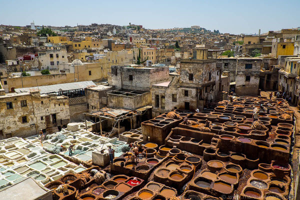 Leather tanning in Fez - Morocco