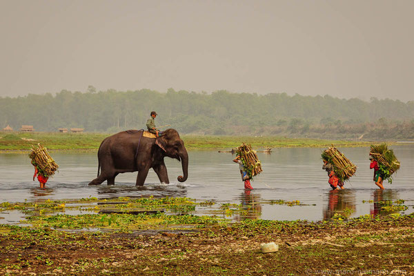 East Rapti River - Entrance to Chitwan National Park