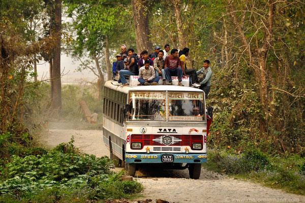 Public Transport - Terai - Nepal