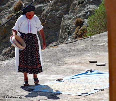 Frau Farmakídis verteilt