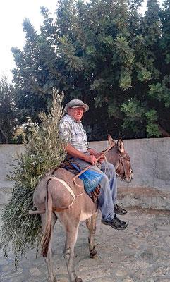Reiter auf dem Esel