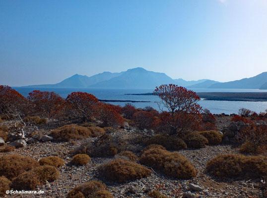 Landschaft - Meer und Berge :-)