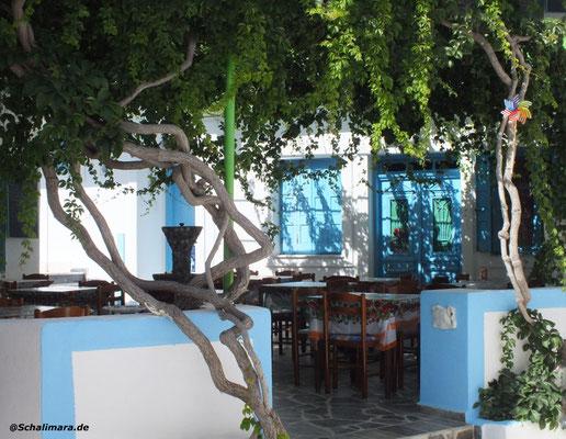 Die Taverne Anixis mit der schönen Laube