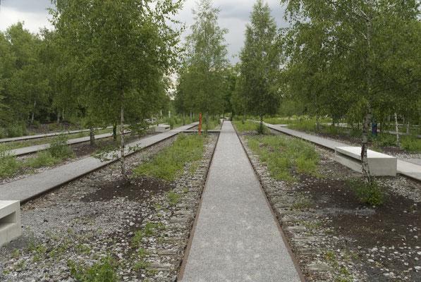 Zollverein-Park, Juni 2009