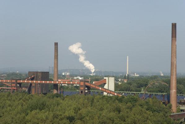Ganz im Hintergrund: die Kokerei Prosper in Bottrop (noch in Betrieb), August 2008