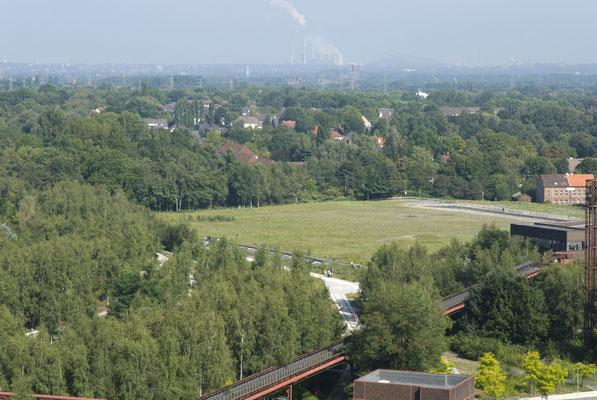 Freigelände für die geplante Design-Stadt, August 2008