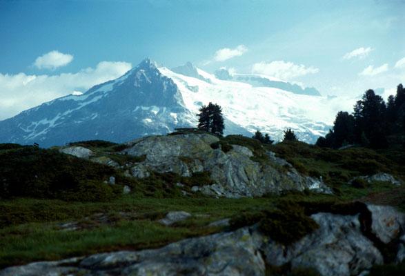 Riederalp mit Geisshorn (3740m) im Hintergrund
