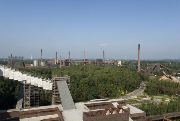 Im Hintergrund: die Kokerei Zollverein, August 2008