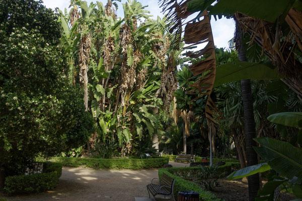 Stadtpark von Málaga