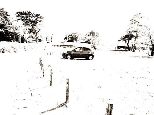 黒白撮影。丘の下に駐車中。車の映ってないのを「コブの涙」へ使いました。