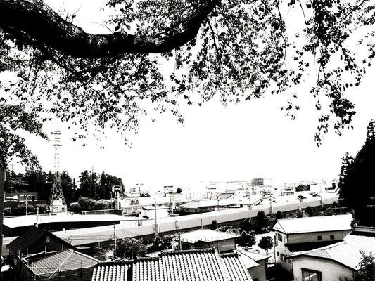 図書館から海方面を見た町の眺め。