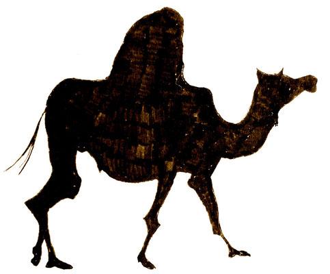 駱駝さん 横