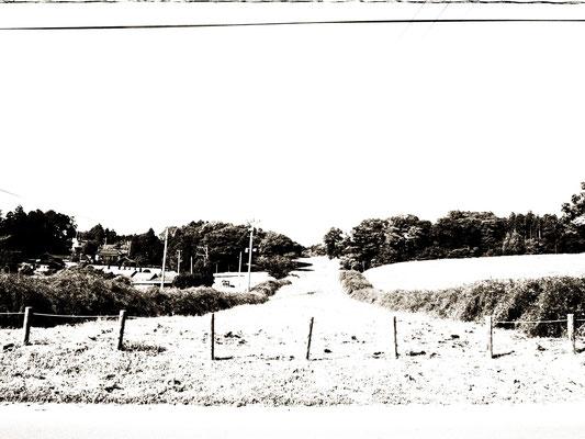 黒白撮影。丘の下から見た感じ。